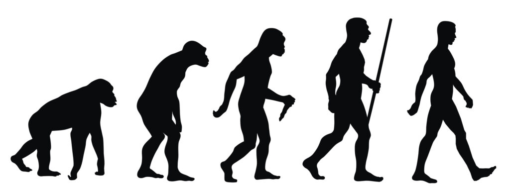 Black and white image of the evolution of man.